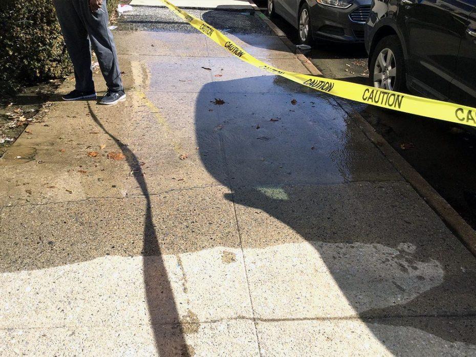 Bayside Water Main Leak Reapair Sidewalk