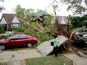 Tree crushes water main