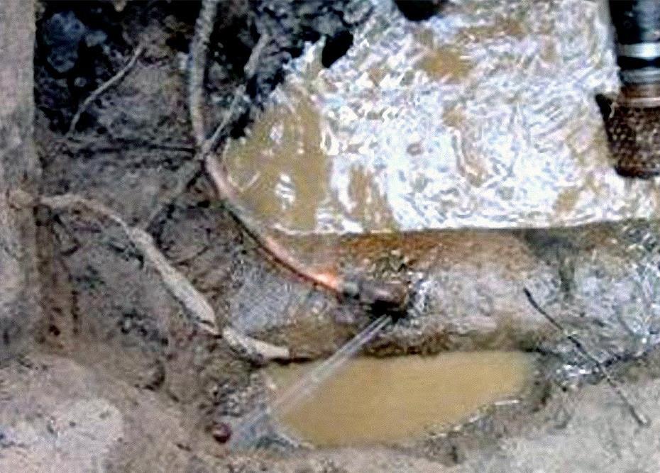 water line leak